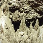 Lehmbäumchen (Vorschau)
